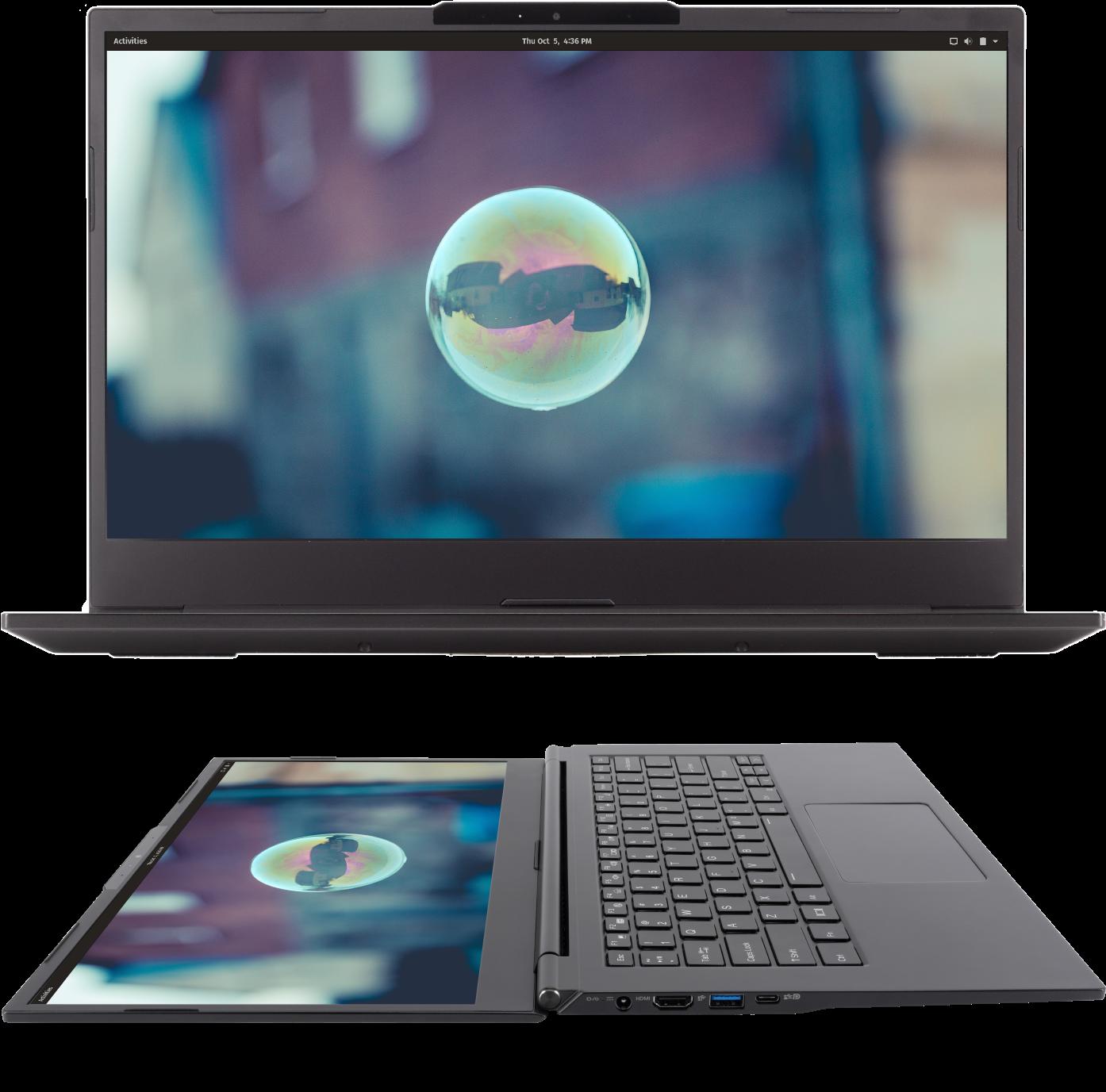 Lemur Pro: laptops